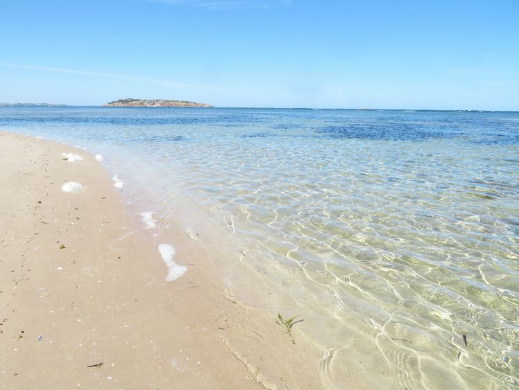 Seascape Blue Clear Water Nature Empty Beach Refleshing Beach Sea Sand Sunny Water Horizon Over Water Beauty In Nature Tranquility