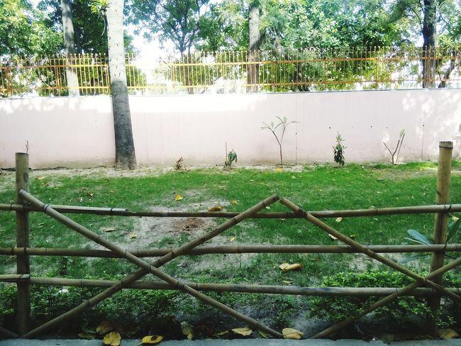 Water Fence Wet Rainy Season Rain Drop Tree Nature Protection Outdoors No People Day RainDrop Rainfall Sky