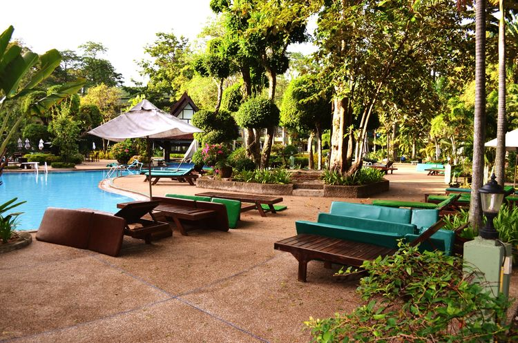 Travel Thailand Vacations Relaxation Tree Swimming Pool Water Sunlight Tourist Resort Lounge Chair No People Summer Tree Pataya Travel Destinations Palm Trees