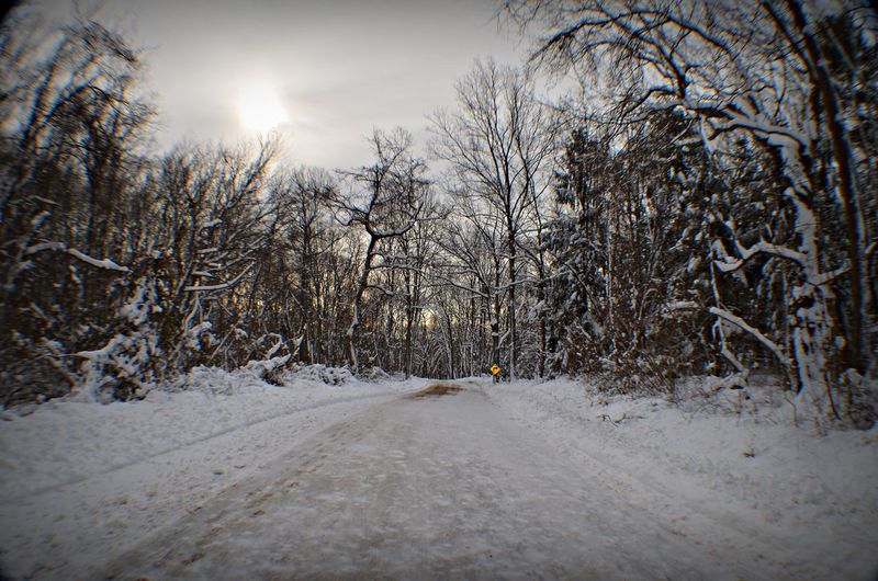 Cold Temperature Connecticut Season  Snow Tranquil Scene Tranquility Weather Winter