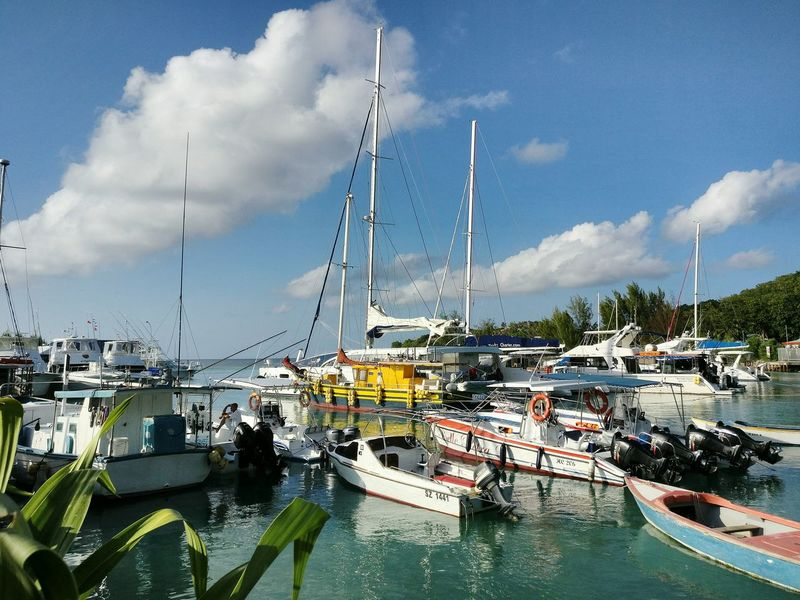 Nautical Vessel Boat Harbor Sailboat Fishermen's Life Fishing Industry Port Harbour Harbour Life Fishing Port Fishing Harbor Fisherboats  Fishing Seychellesisland Seychelles La Digue Sea Tranquility Fishermen Boat Harbour View