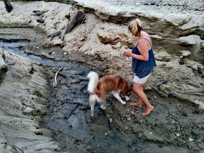Curious dog Husky Dog Perro Domestic Animals Domestic Pets Water Creek Creekbed Pebble Rock One Woman One Animal Walking Side View Leisure Activity Real People Real Life Activity Human Leg Leg Pets Full Length Dog Sand Beach Standing Women Pet Owner Dog Lead Pampered Pets