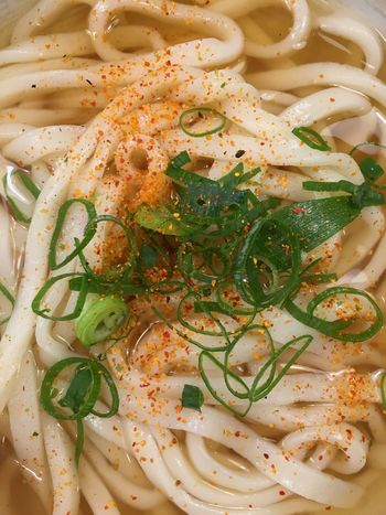 うどん Udon Noodles