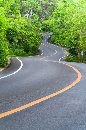 Countryside road with trees on both sides,Curve of the road Curve Curves Asphalt City Countryside Curve Day Direction Dividing Line Empty Road Green Color Growth Marking Nature Outdoors Plant Road Road Marking Sign Street Symbol The Way Forward Transportation Tree Winding Road