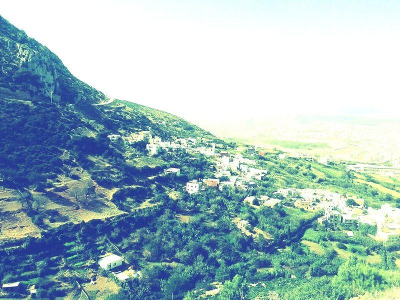OmaarShoots Ob Nature Highs Mount Forest Outside Sky Landscape Green Color