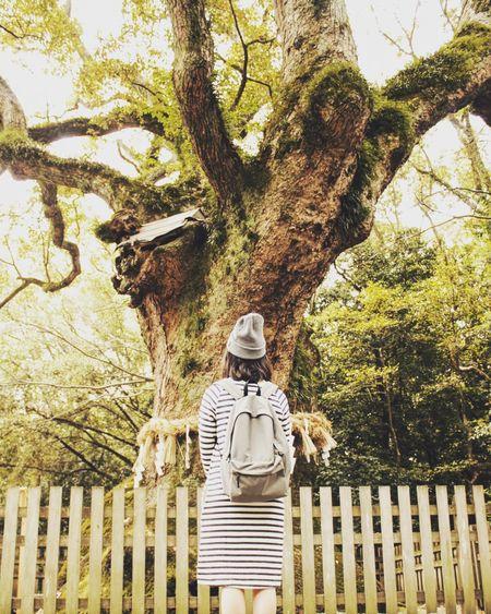 God tree Do you
