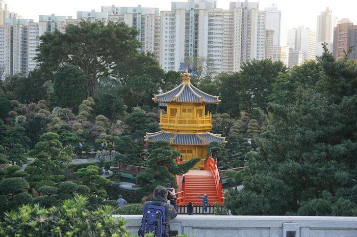 #Chinese #City #Garden #Hong Kong #hongkong #HongKongTrip #nanlian #nanliangarden #pagoda #photographer #photoshoot  #tree Architecture Art City How Many Photographer In This Photo?