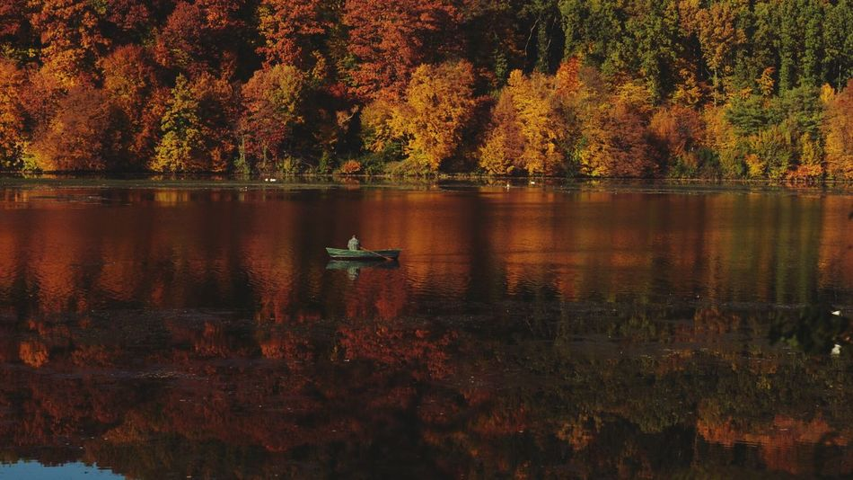 Enjoying Life Colorful Atumn Woods Naturephotography Fishing Fisherman Spaziergang Durch Den Herbst. Atumn Colors Colors Of Atumn