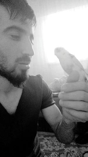 Goodnight✌ I Like Mybird Everytıme Very Cute ı Love My Pet Playing With The Animals Turkey B/W Photography Black And White