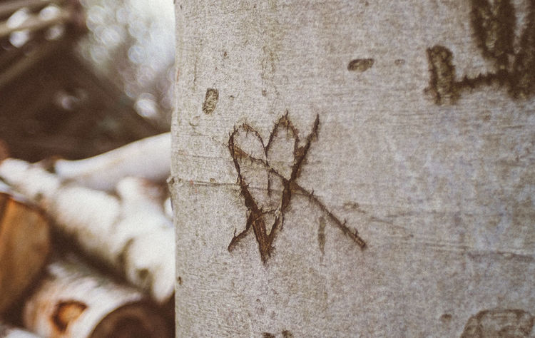 Close-up Day Focus On Foreground Heart Love Nature No People Outdoors Textured  Tree Tree Trunk