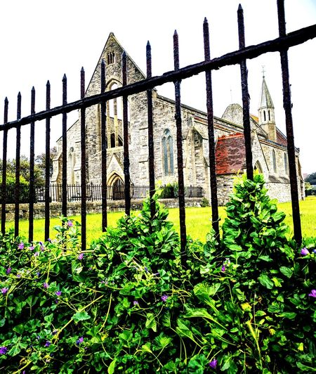 Green Color Grass Nature Church Architecture Abandoned Church Cathedral Purple Flowers Hedgerow Scenics Walks No People Day England 🌹 Outdoors Fence Railings And Iron Old Buildings