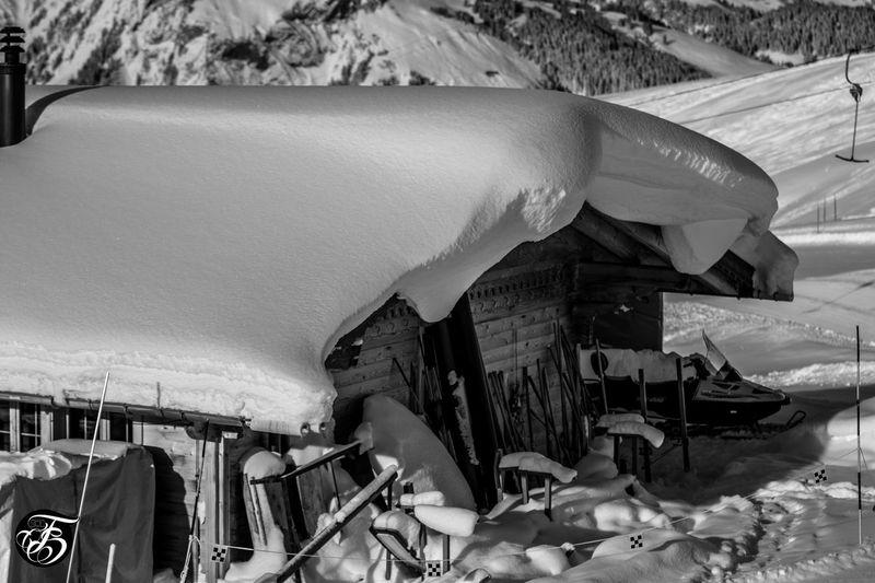 Adelboden Colorwear FORLIFE Frends Gmp Granmastapark Saas Fee Snowboard Snowboarding ❤ Tomschäferphotography Winter