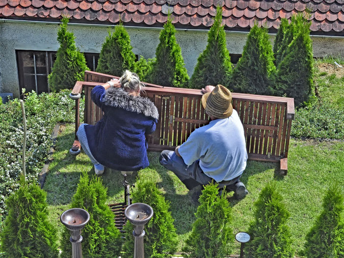 Adult Adults Only At Work Day Garden Green Color In Operation May Day On Job Outdoors People Plant Real People Rear View To Be Hard At Work To Work Together As A Good Team Togetherness Two People Women Work Posture