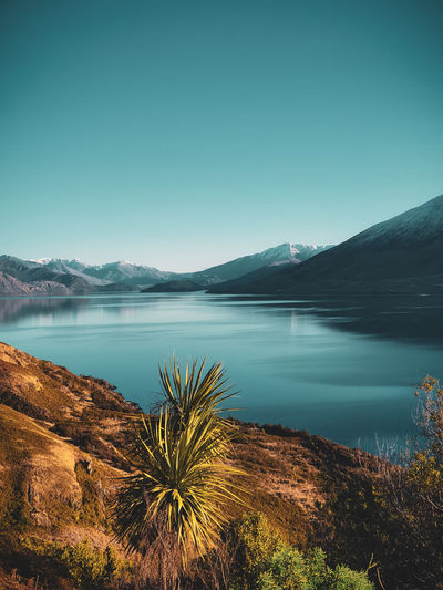 Scenic view of lake against clear blue sky in new zealand
