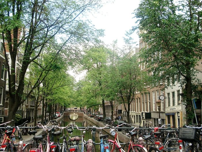 Your Amsterdam Amsterdam City Life River Bycicles Boats Holland Showcase April Netherlands City Taking Photos Water Reflections Buildings Colorful Green Tree Green Amesterdao Channels Bridges Garden Bicycles Nature Trees Been There. Done That.