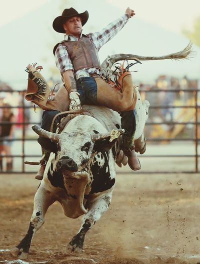BullridingloveBullriding Bull Rodeo Cowboy Animal_collection Western Summer2015 Check This Out