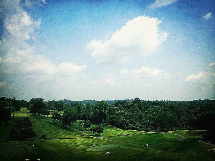 Work & Play Golfing