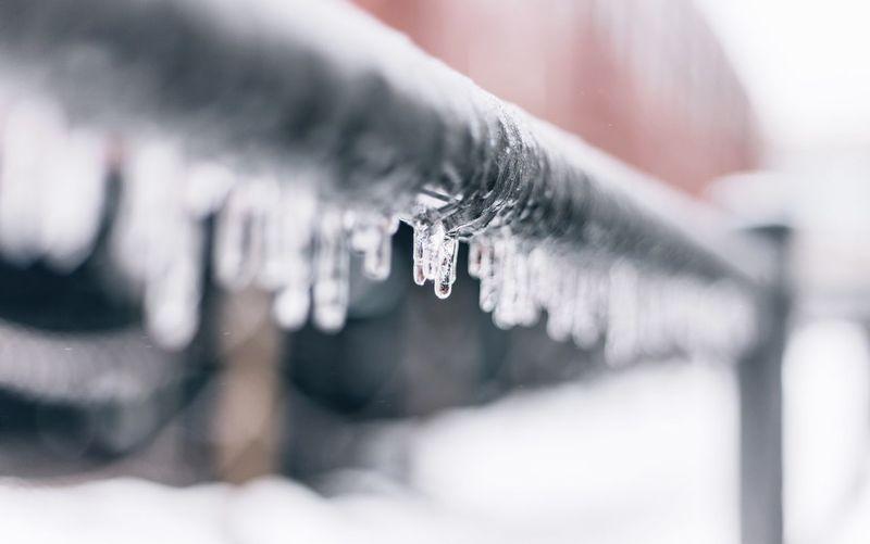 Close-up of frozen railing