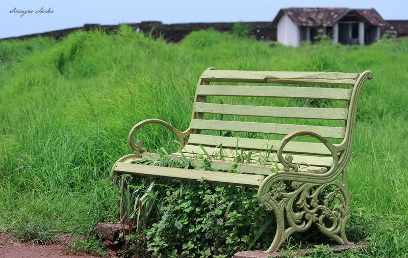 Dreamland Nature Bench Sweethome Bekalfort Awsmness Sitnrelax