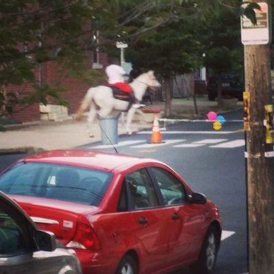 Bruh.. where did this dude get a horse from in North Philly though ?? Icant