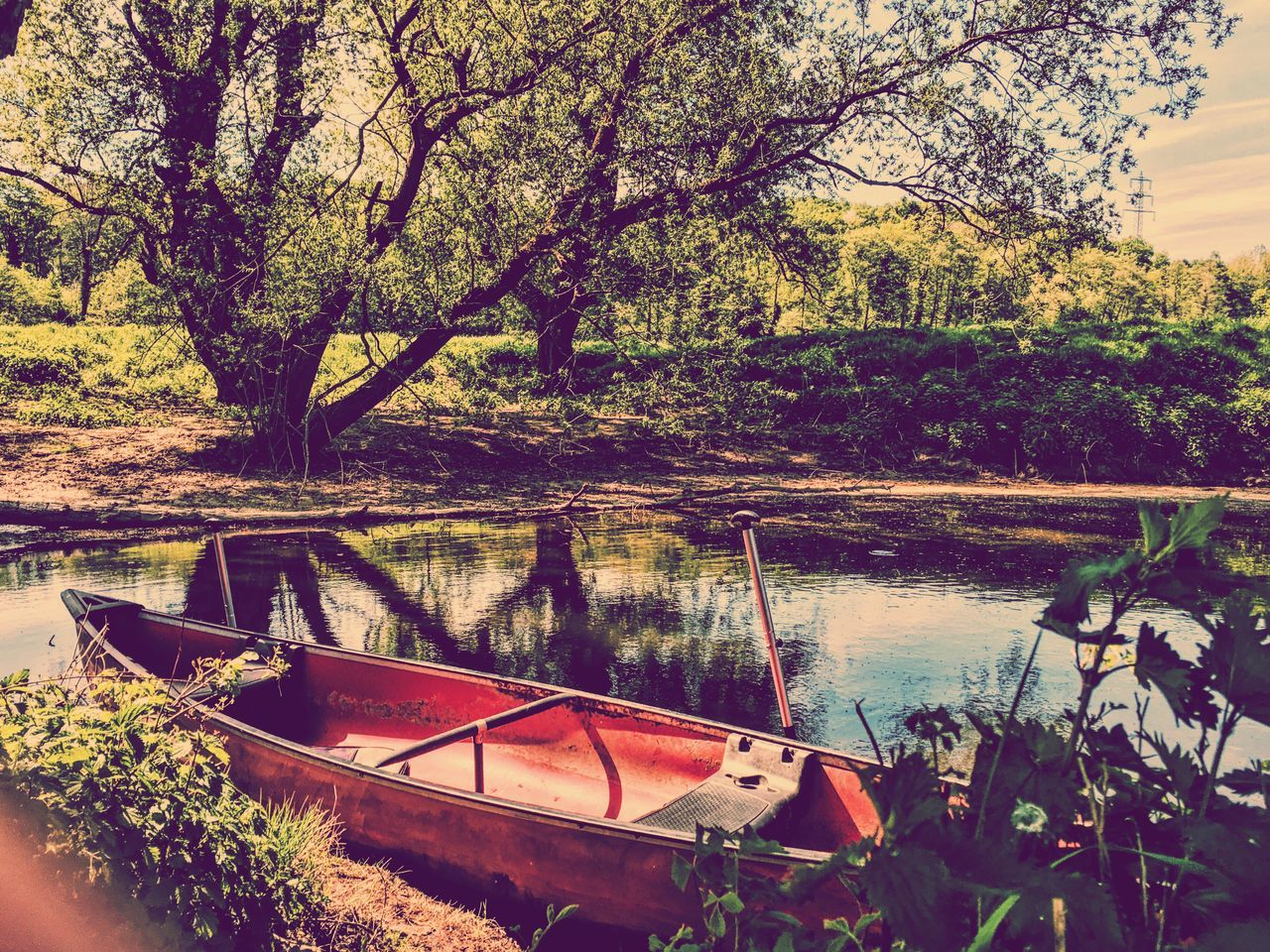 Boat Moored On Lake Against Trees