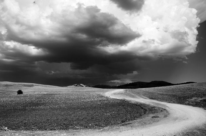 Throught The Fields Landscape Adventures In Wonderland Nature Overcast Sky Blackandwhite Photography Walking Alone... Solitude Andalucía No People Outdoors