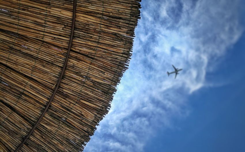 Flying Sky Low Angle View Day No People Outdoors Airplane Nature Sunumbrella Sunlight EyeEm Best Shots Airplane Sky Vacations Cloud - Sky Serbia Blur Backgrounds Low Angle View Tree Sky And Clouds Travel Landscape Travel Destinations Close-up