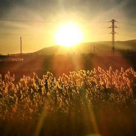 posta de sol a Cornellà Puesta Del Sol