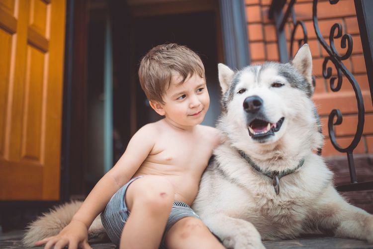 Boys Child Childhood Cute Domestic Domestic Animals Front View Innocence Lifestyles Males  Mammal Men Mouth Open One Animal One Person Pets Portrait Real People Shirtless