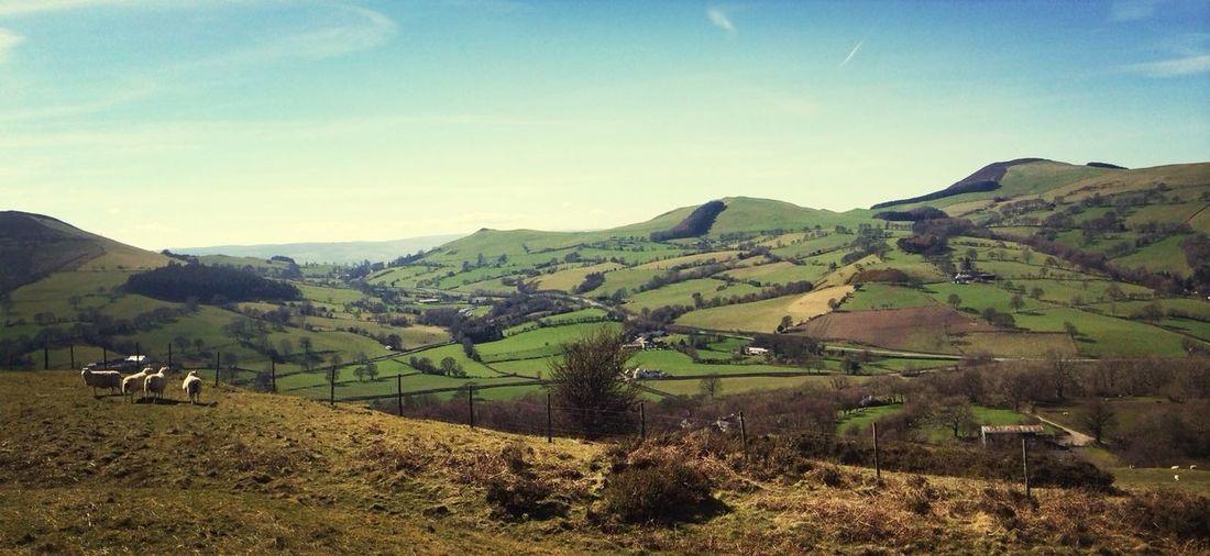 North Wales Bryn Alan Clywd