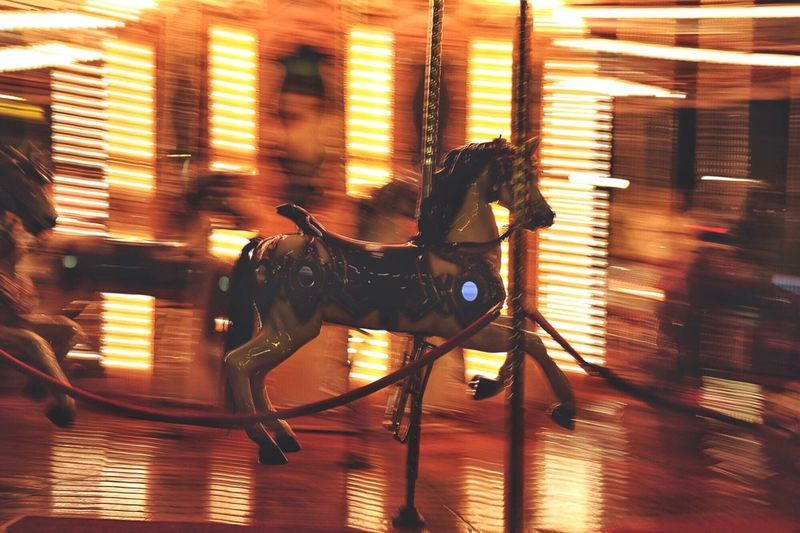 Side view of horse at night