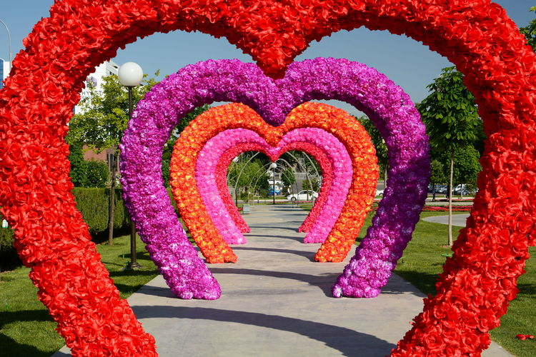 Hearts tunnel. Tashkent. Uzbekistan Multi Colored Purple Garden Pattern Park Beauty In Nature Footpath Architecture Direction Decoration Red The Way Forward Creativity No People Pink Color Flowering Plant Nature Art And Craft Flower Tashkent Uzbekistan Central Asia Uzbek Springtime Spring City Cityscape