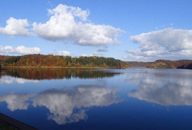 An der Trinkwassertalsperre Autumn Autumn Colors Drinking Water Perspectives On Nature Wahnbachtalsperre Beauty In Nature Cloud - Sky Day Drinking Water Reservoir Lake Nature No People Outdoors Reflection Scenics Sky Tranquil Scene Tranquility Tree Water