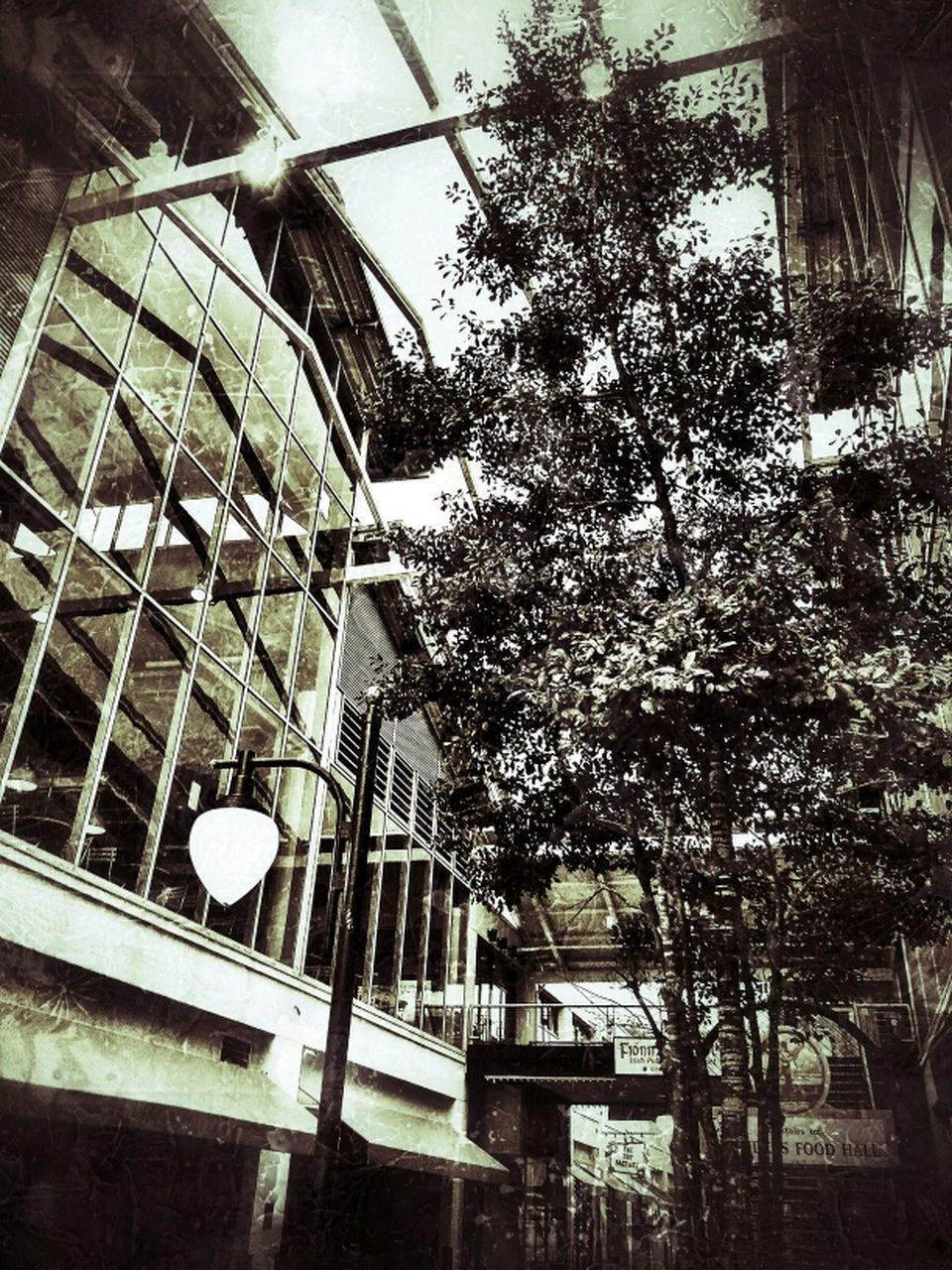 architecture, built structure, low angle view, no people, building exterior, day, tree, outdoors
