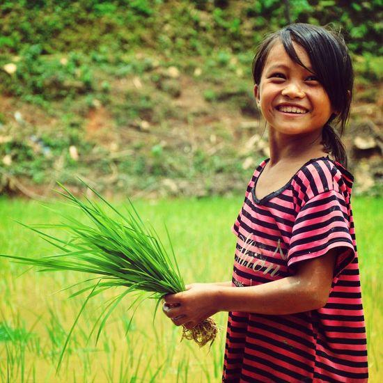 Vietnam Village Child Rice Field