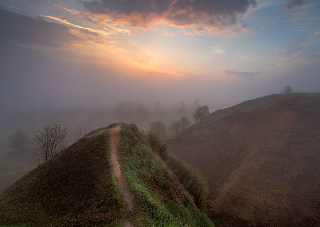 Russia, Oka river, fog, early morning Russia Beauty In Nature Cloud - Sky Early Morning Environment Fog Hazy  Idyllic Land Landscape Mountain Nature No People Non-urban Scene Oka River Outdoors Plant Remote Scenics - Nature Sky Sun Sunset Tranquil Scene Tranquility