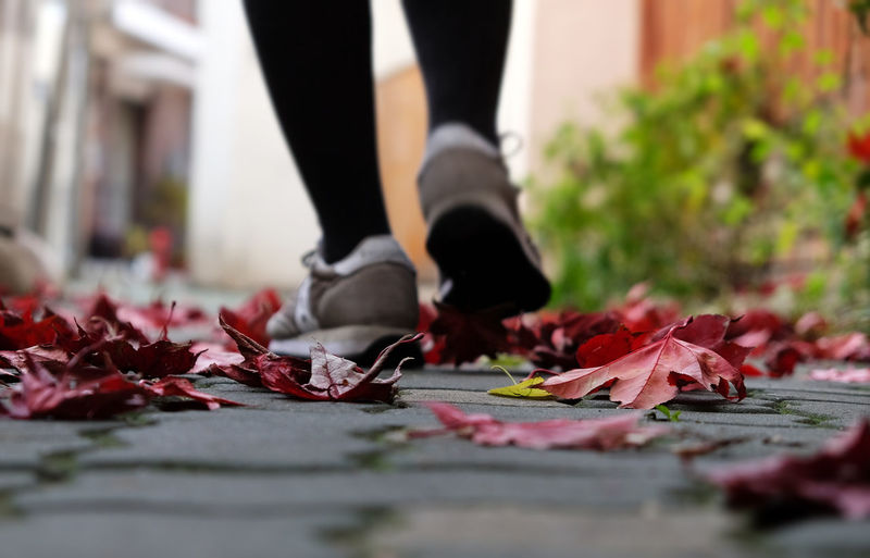 Low Angle View Moving Walking Around Autumn Change Close-up Day Fragility Human Body Part Human Leg Leaf Lifestyles Low Angle Low Section Move Nature One Person Outdoors Real People Red Selective Focus Shoe EyeEmNewHere It's About The Journey