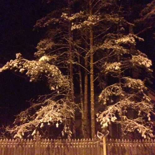 #dacha #komarovo #комарово #snow #spb #stpetersburg #winter #night