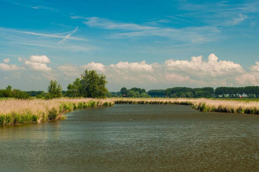 Sony A700 EyeEm Premium Collection Sky Clouds Lake Water The Netherlands Zeeland  Zeeuws Vlaanderen EyeEm Market ©