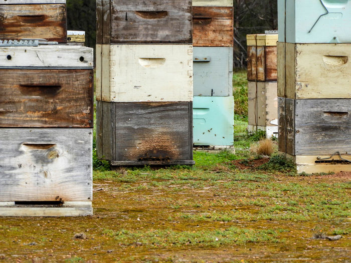 bee hives Abandoned APIculture Architecture Bee Bee Hive Bee House Beehive Beehive Huts Beehives Beesofeyeem Building Building Exterior Built Structure Entrance Hive Hives Honey Bee Honey Hive Honey Production Land Man Made Hives No People Old Outdoors Weathered
