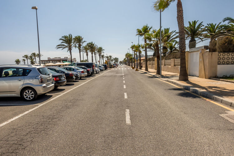 Transportation Car Motor Vehicle Tropical Climate Road Palm Tree Tree Street City Land Vehicle Plant Direction Nature Sign The Way Forward Day Sky Symbol Sunlight Diminishing Perspective No People Outdoors Treelined Almería SPAIN