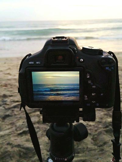 Photography adventures at the beach in Carlsbad CA. Taking Photos Enjoying Life DesertBloomPhotography Canonphotography Beachphotography CarlsbadCalifornia TakingAPictureOfAPhoto Theessenceofsummer