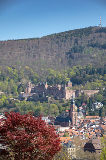 Heidelberg Castle Schloss Heidelberg Castle Architecture Built Structure Building Exterior Tree Building Plant Sky Nature No People Day History Mountain The Past Travel Destinations High Angle View Outdoors Religion Land Environment Residential District Germany