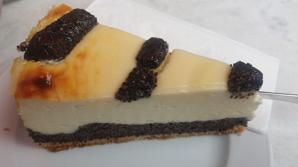 Cheesecake with poppy seeds Baked Cheese Cake Cheesecake Close-up Dessert Focus On Foreground Food Freshness Indulgence No People PoppySeed Ready-to-eat Serving Size Slice Of Cake Still Life Sweet Food Temptation