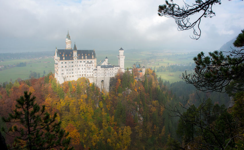 Neuschwanstein Castle with Autumn colors, Fussen, German Tree Architecture Plant Built Structure Building Exterior History Autumn Nature Building The Past Change Cloud - Sky Sky No People Travel Destinations Fog Day Tower Tranquility Outdoors