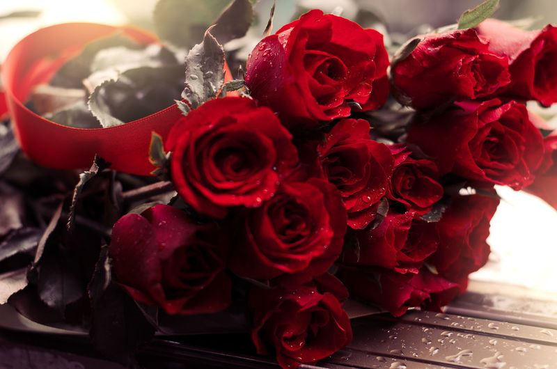 rose in love Wedding Relationship Anniversary Beauty In Nature Bouquet Bunch Of Flowers Close-up Flower Flower Arrangement Flower Head Flowering Plant Focus On Foreground Fragility Freshness Gift Indoors  Inflorescence Nature No People Petal Rain Day Red Rosé Rose - Flower Vintage