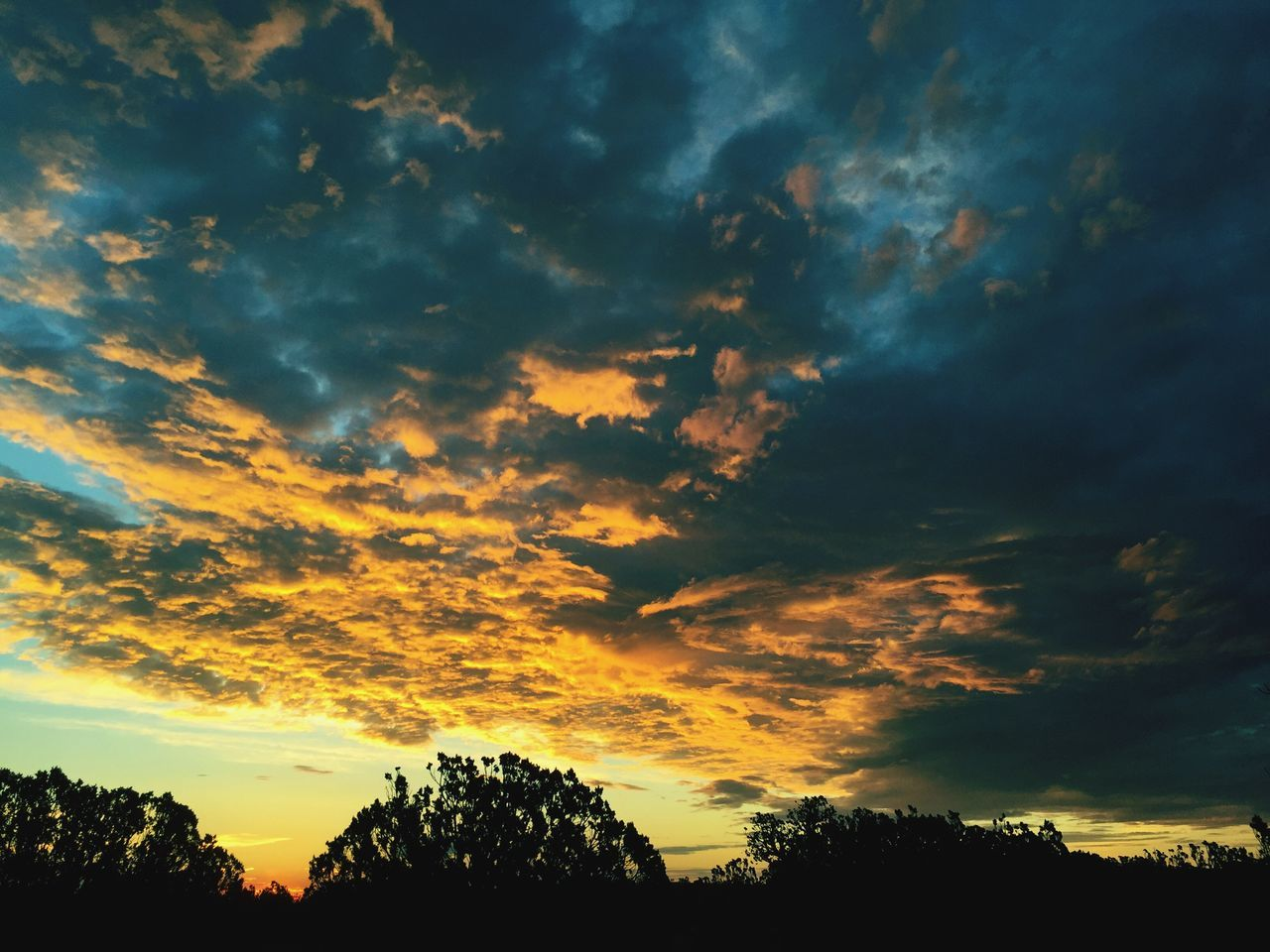 beauty in nature, sunset, scenics, tree, cloud - sky, tranquil scene, sky, tranquility, nature, silhouette, dramatic sky, idyllic, no people, low angle view, outdoors, storm cloud, day