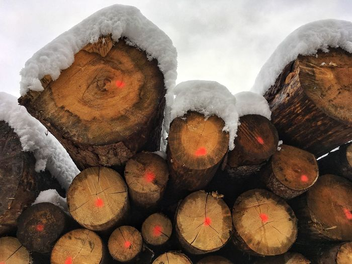 No People Large Group Of Objects Wood - Material Cold Temperature Snow Winter Timber Forestry Industry Woodpile Outdoors Winter Tranquil Scene