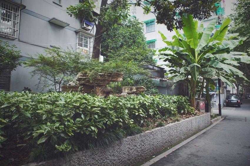 VSCO Old Buildings Alleyezonmayphotography Hangzhou Stress Backstreets & Alleyways Hello World Living Enjoying Life City Life My City