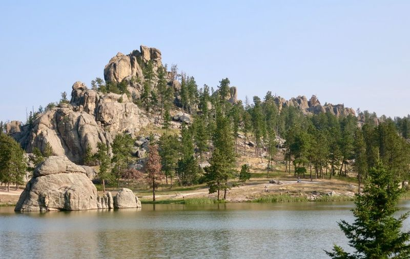 Rock formations surrounding Sylvan Lake in Custer State Park in South Dakota Travel Travel Destinations Geology Rock - Object Rock Formation Clear Sky Tranquility Nature Tranquil Scene Scenics Day Tree No People Beauty In Nature Outdoors Waterfront Water Mountain Sky Physical Geography Cliff Landscape